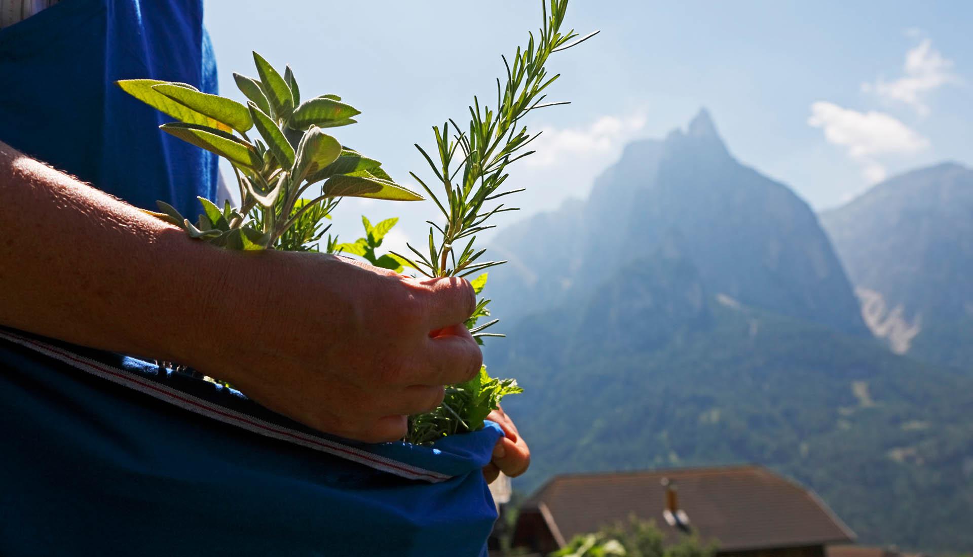 Bauernhofurlaub in Kastelruth / Südtirol