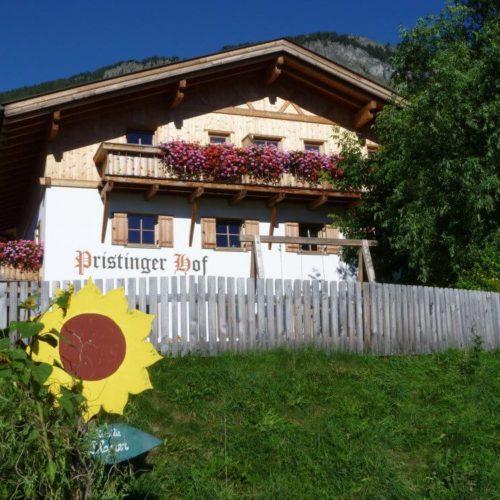 Impressionen vom Pristingerhof in Seis am Schlern